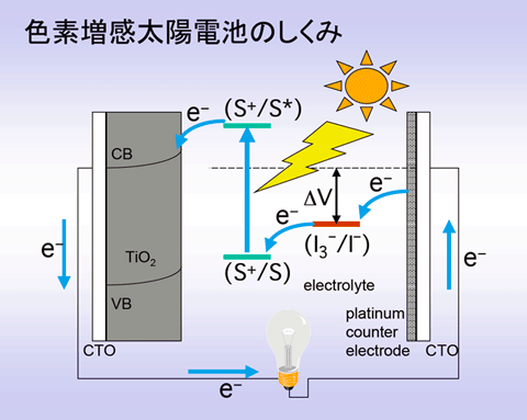 n型半導体(TiO2)を用いる色素増感太陽電池の動作原理概略説明図